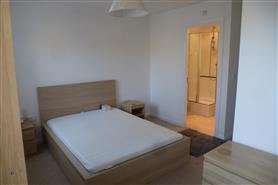 1 bedroom  flat share