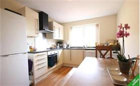 1 bedroom flat share for rent